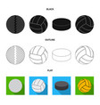 sport and ball logo vector image vector image