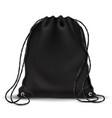 sport backpack backpacker bag with drawstrings vector image