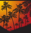 tropical palm trees silhouette on sunset vector image vector image