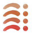 color shades of foundation make up face skin vector image