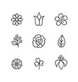 floral icon set flowers berry and leaves line art vector image vector image