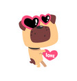 funny pug dog in sunglasses in the shape of a vector image