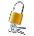 gold padlock with three keys vector image