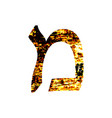 hebrew letter mem shabby gold font the hebrew vector image vector image