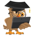 Owl teacher holds tablet computer vector image vector image