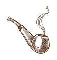smoking pipe or tobacco product with smoke vector image