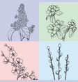 hand drawn floral spring cards vector image