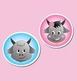 buffalo male and female vector image