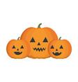 halloween pumpkins icon vector image