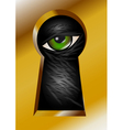 keyhole and eye vector image
