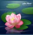 lotus flower realistic background vector image