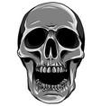 monochromatic realistic red skull vector image