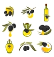 Spanish black olive fruits and oil bottles icons vector image vector image