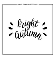 Bright autumn text - hand painted lettering vector image vector image