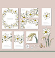daffodil set with visitcards and greeting vector image vector image