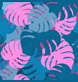 monstera leaves tropical design trendy summer vector image vector image