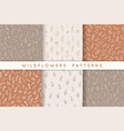set seamless patterns with leaves herbs vector image vector image