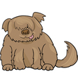 Sheepdog shaggy dog cartoon vector image vector image