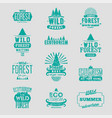 wild forest and ecotourism labels grunge set vector image vector image
