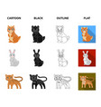 animals domestic wild and other web icon in vector image