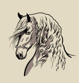 horse head with a mane hand drawn vector image vector image