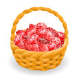 Isolated basket with red rubies vector image vector image