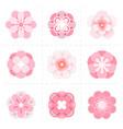 pink paper sakura flowers vector image
