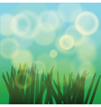 sun rays and fresh green grass vector image vector image