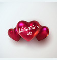 valentines day holiday decoration vector image vector image
