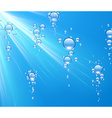 Water background with bubbles vector image vector image