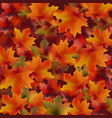 autumn leaves pattern background realistic vector image vector image