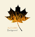 black maple leaf with yellow grass autumn vector image