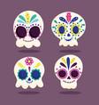 day dead catrinas skull floral flower vector image