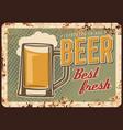 freshly brewed beer rusty metal plate vector image