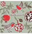 Retro Pomegranate Pattern vector image vector image