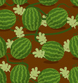 Water-melon plantation seamless pattern Fruity vector image