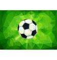 Football image vector image