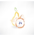 Apple and pear grunge icon vector image