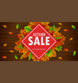 autumn sale banner with falling leaves vector image