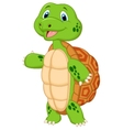 Cute turtle cartoon presenting