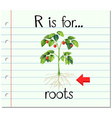 Flashcard letter R is for roots vector image vector image