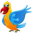 parrot with yellow and blue feather on white vector image