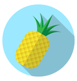 pineapple fruit icon on blue circle with long shad vector image vector image
