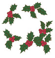 set of christmas holly leavesbranch of green vector image vector image