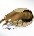 termite cartoon vector image vector image