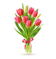 tulips bouquet realistic 3d spring holland vector image vector image