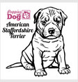 american staffordshire terrier puppy sitting vector image vector image