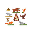 colorful collection of funny forest animals fox vector image vector image