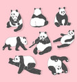 cute panda bear collection hand drawn vector image vector image