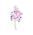 isolated purple plant wedding decoration vector image vector image